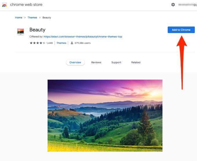 Add to Chrome button Google Chrome Web Store Theme