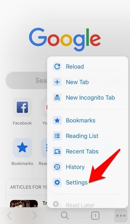 Chrome iOS Settings menu