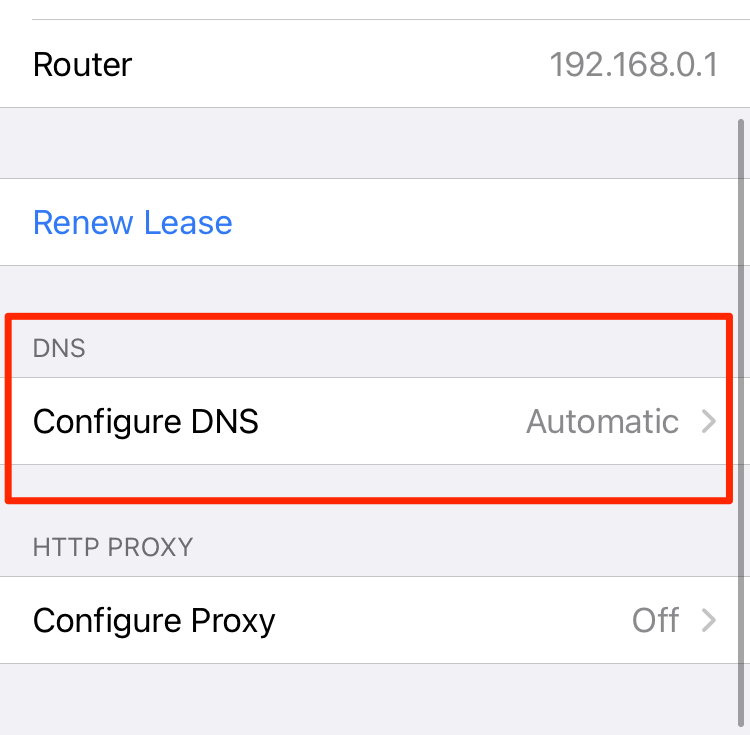 Configure DNS Settings in iOS WiFi connection