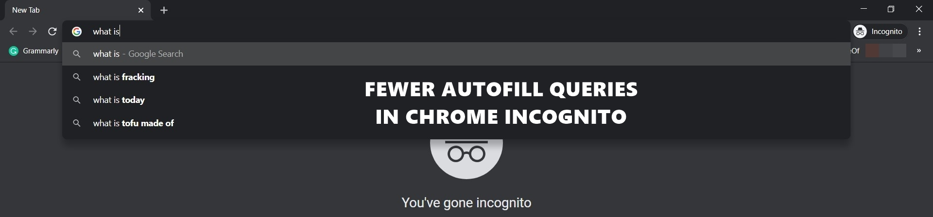 Fewer Autocomplete Queries in Incognito Mode