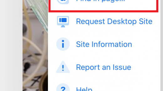 Find in page Chrome iPhone iPad Option