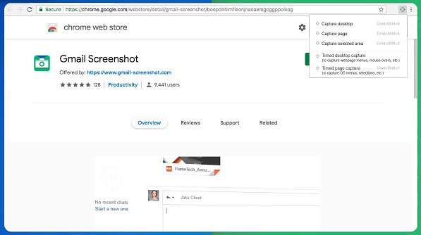 Gmail Screenshot Exntension