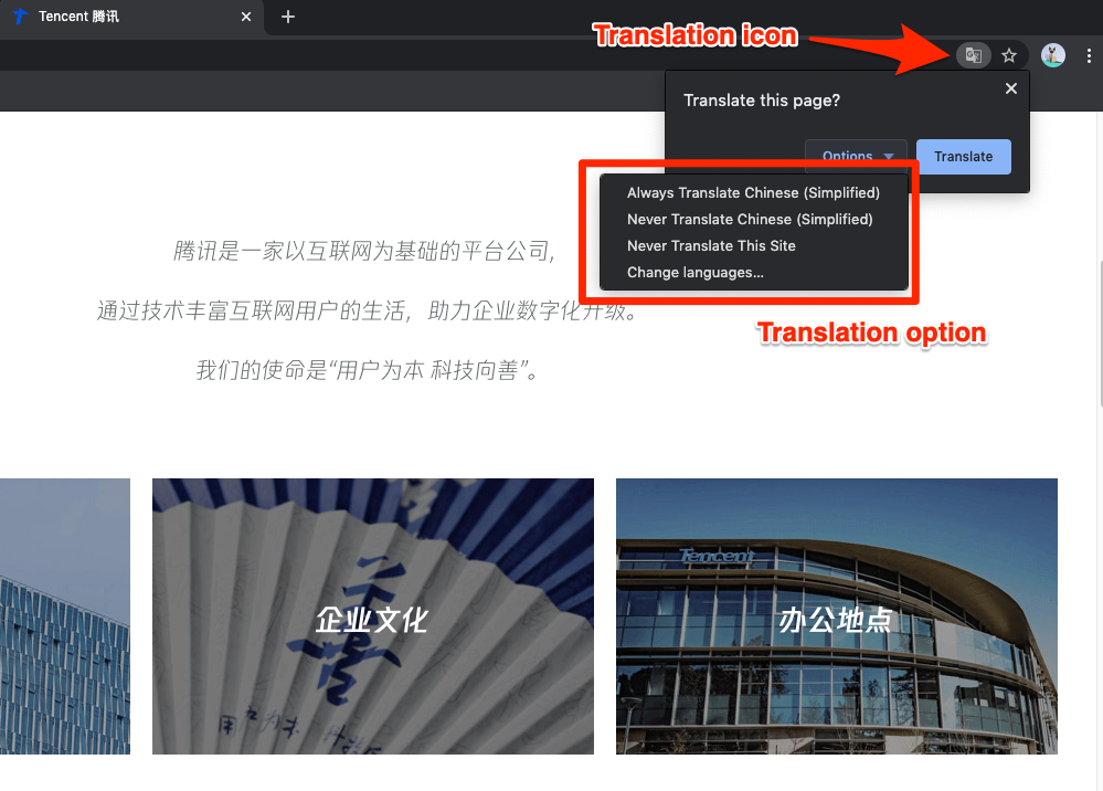 Google Chrome Translation and Options in Website