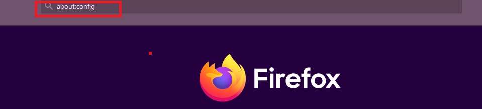 How to block javascript on Firefox