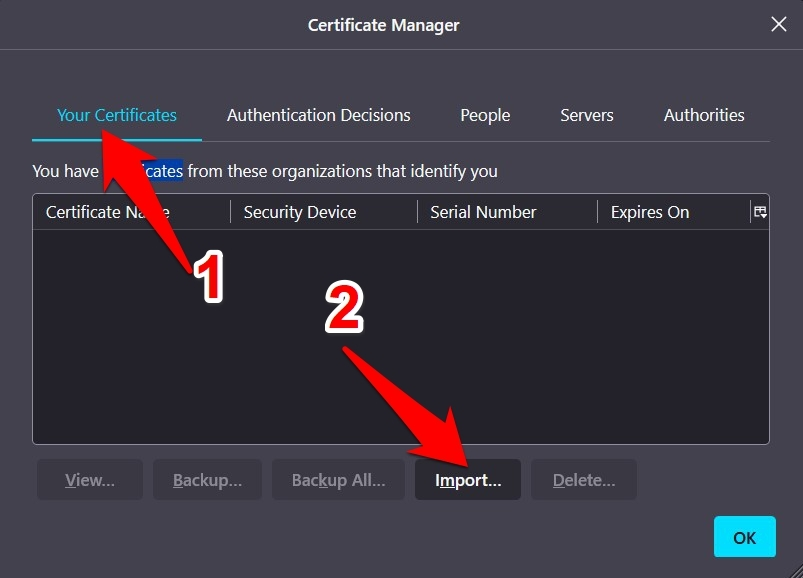 Import SSL Certificate in Mozilla Firefox