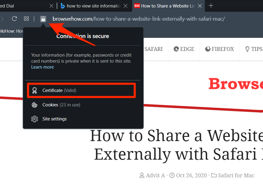 Opera Connection and Site Information in Padlock