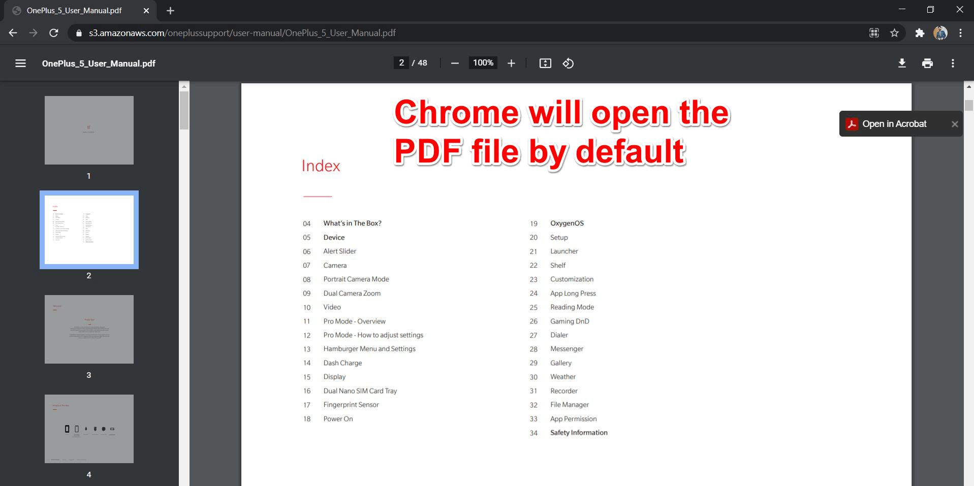 PDF Reader in Chrome Browser