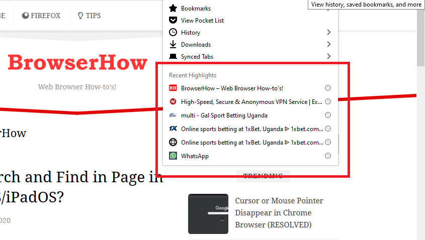 Recent Highlights in Firefox computer browser