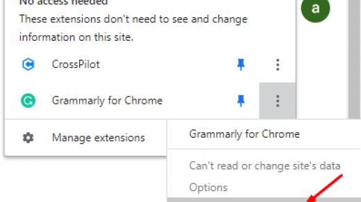 Remove from Chrome under Extensions icon