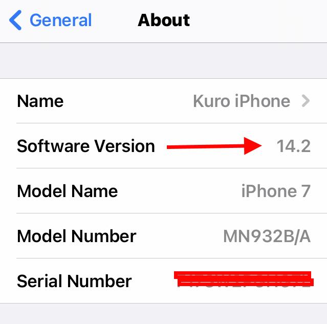 Safari version on iOS iPhone