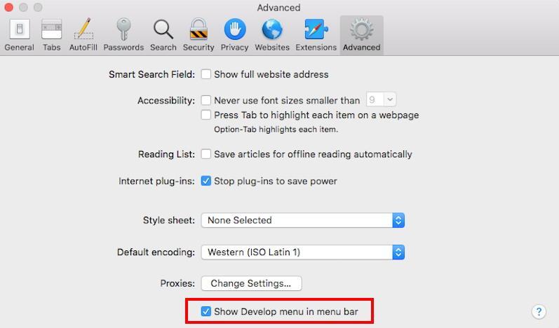 Show Develop menu in menubar on Safari