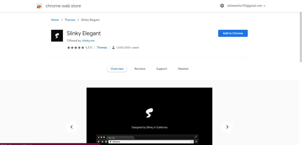 Slinky Elegant Chrome Theme