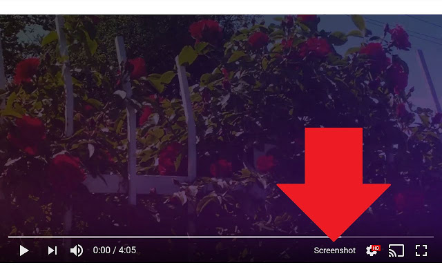 YouTube Video Save as Screenshot Extension